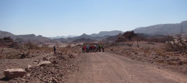 Day 4 – Desert
